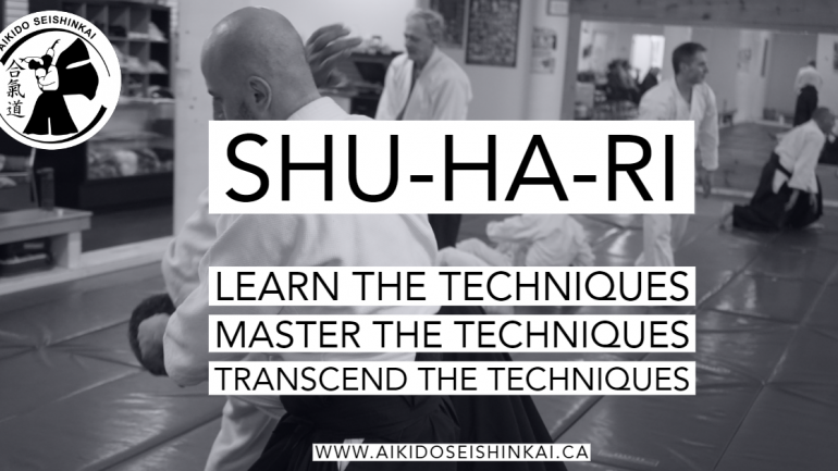 Shu-Ha-Ri : Beginner to Expert